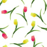 Tulips simless pattern-01. Beautiful spring seamless pattern with Yellow,red tulips.The flowers on a white background.Vector illustration.Print for gift wrapping Stock Image