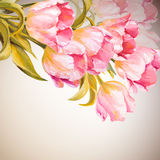 Tulips. Spring flowers invitation Stock Images