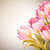 Tulips. Spring flowers invitation Royalty Free Stock Images