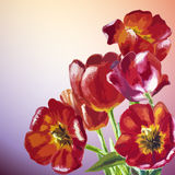 Tulips. Spring flowers invitation Royalty Free Stock Photography
