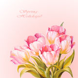 Tulips. Spring flowers invitation template card Stock Image