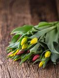 Tulips. Spring tulips loose on the oak table Royalty Free Stock Photos