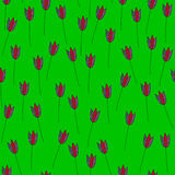 Tulips of Strong green. Seamless pattern. Tulips on a strongly green background. For printing on packaging, bags, cups, laptop, furniture, etc. Vector Royalty Free Stock Photography