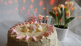 Tulips and sweet cake with a lit candle. Tulips, cake stock video footage