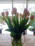 Tulips on the table. Tulip flowers at home Royalty Free Stock Photography
