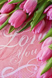 Tulips and a text on pink background Stock Images