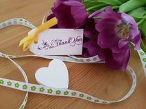 Tulips with Thank You Note stock photo