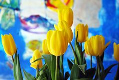 Tulips. The tulip is a Eurasian and North African genus of perennial, bulbous plants in the lily family. It is an herbaceous herb with showy flowers, of which stock photo
