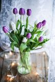 Tulips - Ultraviolet stock photo