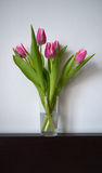 Tulips in a vase Stock Photography