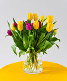 Tulips in vase Valentine day stock images