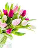 Tulips in vase. Over white Royalty Free Stock Image
