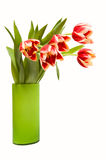Tulips in vase. Isolated on white Stock Photo