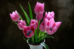 Tulips in a vase. On a dark background Royalty Free Stock Photography