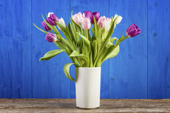 Tulips in a vase with blue wooden background Royalty Free Stock Photography
