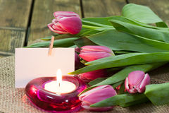 Tulips in vase and burning candle Royalty Free Stock Image