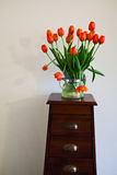 Tulips in vase Royalty Free Stock Photography