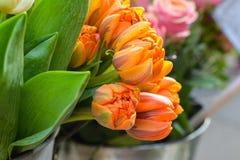 Tulips in the vase. Orange tulips in the vase Stock Photography