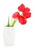 Tulips in vase. Royalty Free Stock Photography
