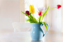 Tulips vase Stock Photos