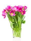 Tulips in the vase Stock Image