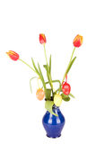 Tulips in a vase  on white Royalty Free Stock Photo
