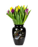 Tulips in a vase on a white background Stock Photo