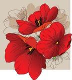 Tulips vermelhos ilustração royalty free