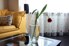 Tulips vermelhos em uma tabela do vidro no ro brilhante da vida Fotografia de Stock
