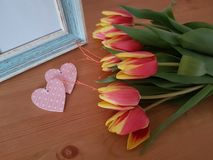 Beautiful Tulips With A Vintage Frame. Tulips with a vintage frame laying on a wooden background, Love, Friendship, Mothers day, Romance, Saying thank you royalty free stock images