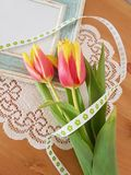 Beautiful Tulips With A Vintage Frame. Tulips with a vintage frame laying on a wooden background, Love, Friendship, Mothers day, Romance, Saying thank you stock image