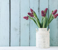 Tulips in a vintage pot Royalty Free Stock Photography