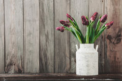 Tulips in a vintage pot Stock Photography