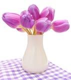 Tulips violetas Imagem de Stock