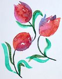 Tulips. Watercolor. Abstract pink violet tulips, my watercolor painting on paper Royalty Free Stock Photos