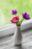 Tulips in a white vase on a light wooden surface. In front of a window Royalty Free Stock Photos
