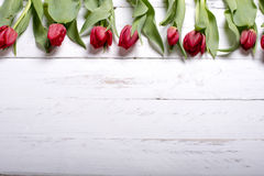 Tulips on white wooden planks eves Stock Photos