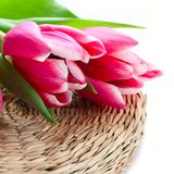 Tulips in a wicker basket stock images