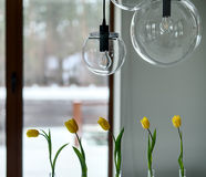 Tulips on the window background royalty free stock images