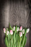 Tulips on wood Stock Images