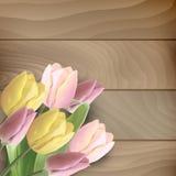 Tulips on wood background Stock Images
