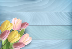 Tulips on wood background Stock Images