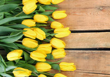 Tulips on wood Royalty Free Stock Image