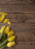 Tulips on wood. Yellow tulips on a rustic wooden background Stock Images