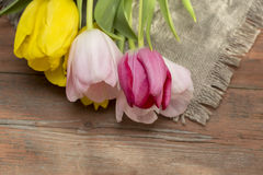 Tulips on a wooden background Royalty Free Stock Photos