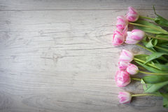 Tulips on a wooden background Royalty Free Stock Photography