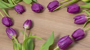 Tulips on a wooden background. Tulips lying on a wooden background Stock Images