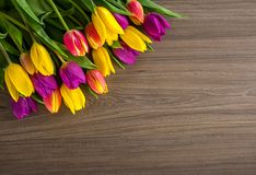 Tulips on a wooden background, Spring Flowers Stock Photography