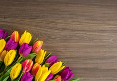 Tulips on a wooden background, Spring Flowers Royalty Free Stock Photo