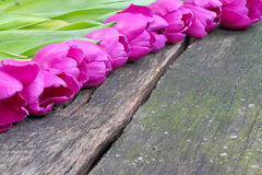 Tulips on wooden board Royalty Free Stock Photography